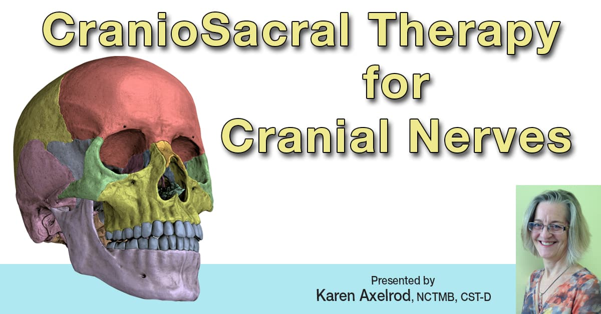CSCN1: CranioSacral Therapy for Cranial Nerves 1